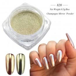0.5g szampana srebrne lustro metaliczny kolor brokat do paznokci olśniewający srebrny pigment holograficzny zdobienie paznokci d
