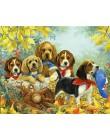 HUACAN obrazy olejne według liczb pies zwierząt zestaw rysunek na płótnie Wall Art ręcznie malowane DIY prezent Home Decor
