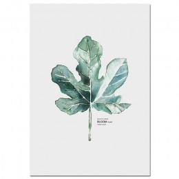 Akwarela rośliny liść plakat na płótnie styl skandynawski drukuj skandynawski ściana artystyczny obraz zdjęcia do dekoracji mini