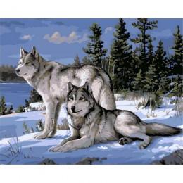 Bez ramki wilk zwierzęta DIY malowanie przez zestawy liczb farba na płótnie akrylowe malowanie według numerów na dekoracje ścien
