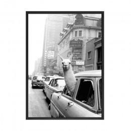 Lamy w taksówce na czasy kwadratowe płótno drukuje i plakaty Vintage czarny biały nadruk nowy jork zdjęcia ściany ozdoby do deko