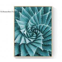 Obraz na płótnie salon cuadros decoracion plakat skandynawski zielony Aloe sukulenty nowoczesne minimalistyczne zdjęcia modułowe