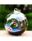 10 sztuk Decor Ball Globe kształt przezroczysty szklana wisząca wazon kwiat rośliny 2019